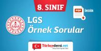 8-sinif-lgs-ornek-sorular.png